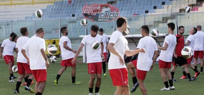 Road to Benevento: D'Allocco dentro o fuori?