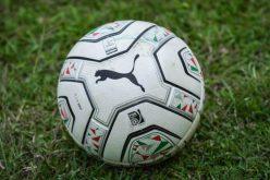 Alessandria-Pisa, Lega Pro conferma impiego 'Moccagatta'