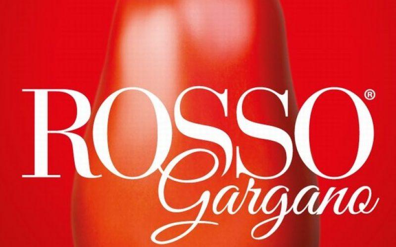 """Rosso Gargano: """"Pagamento anticipato, anche le altre aziende contribuiscano"""""""