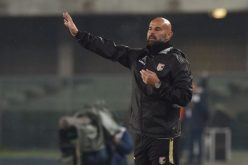 Ufficiale: Stellone esonerato dal Palermo. Contattati Rossi e Guidolin