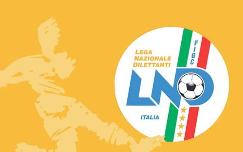 Il caso – La prossima Serie D potrebbe parlare pugliese: 12 squadre ai nastri di partenza?
