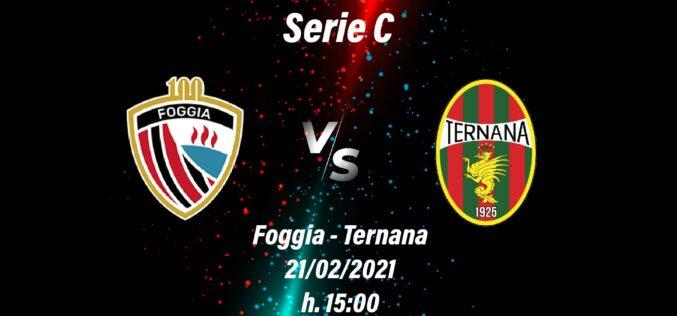 Foggia-Ternana: le ultimissime