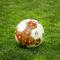 Flash Goal: Catania-Foggia 1 – 3 Il Foggia fa fuori il Catania, ora tocca il Bari